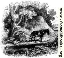 [picture: 74.---Welsh Agricultural Cart]