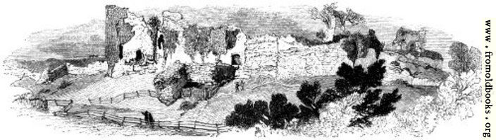 [picture: 105.---General View of the Ruin of Pevensey Castle.]