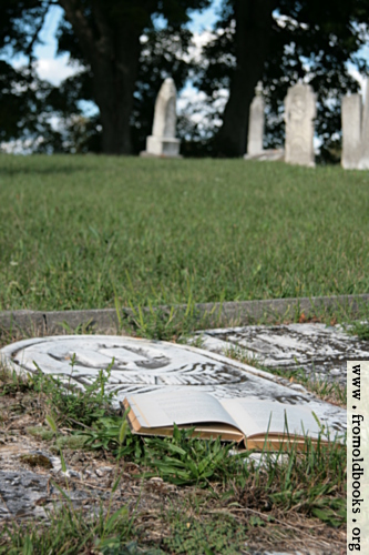 [Picture: Iron cross and open book on grave]