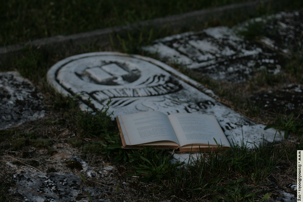[Picture: Open poetry book on old grave]