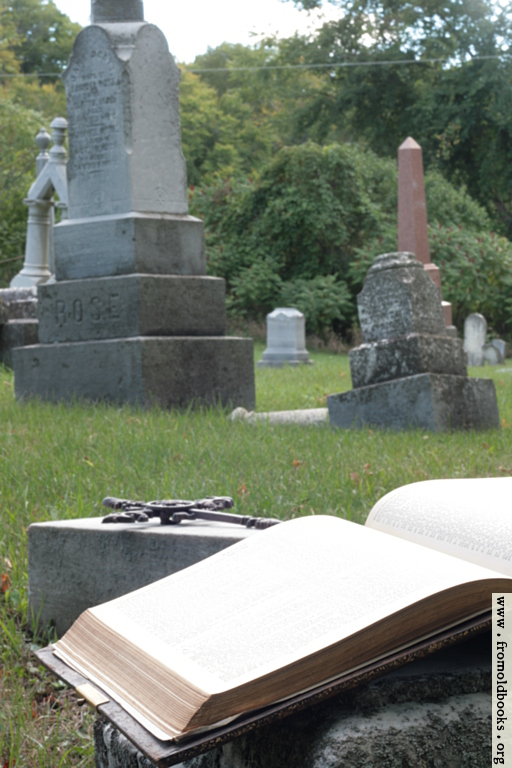 [Picture: Open Bible and cross in graveyard (portrait version)]