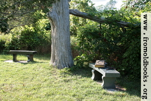 [Picture: Two benches under an old tree with a Bible]