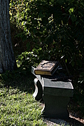 Bible and cross on bench under tree