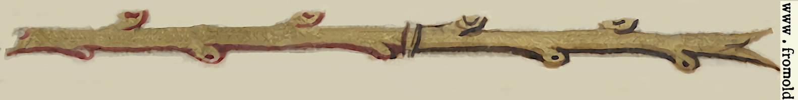[Picture: Twig line filler]