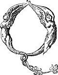 [picture: Initial Leter Q From Mitelli's Alphabet]