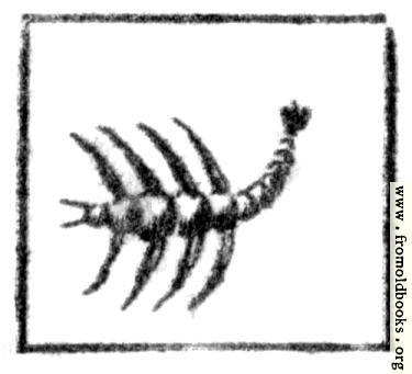 [Picture: Scorpio (the Scorpion)]