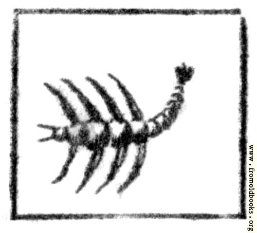 [Picture: Scorpio (the Scorpion)]