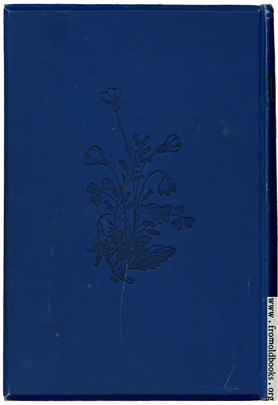 Book Cover Black Mold : Back cover