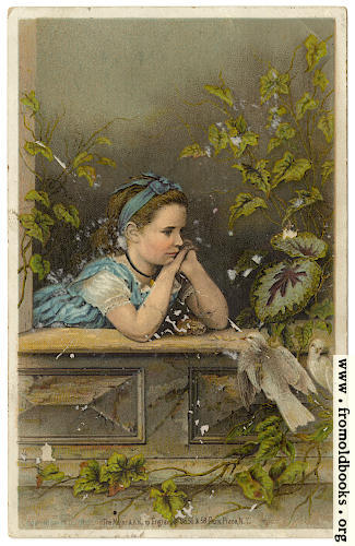 [Picture: Girl in the window: Atlantic and Pascific Tea Company 1880s Trade Card]