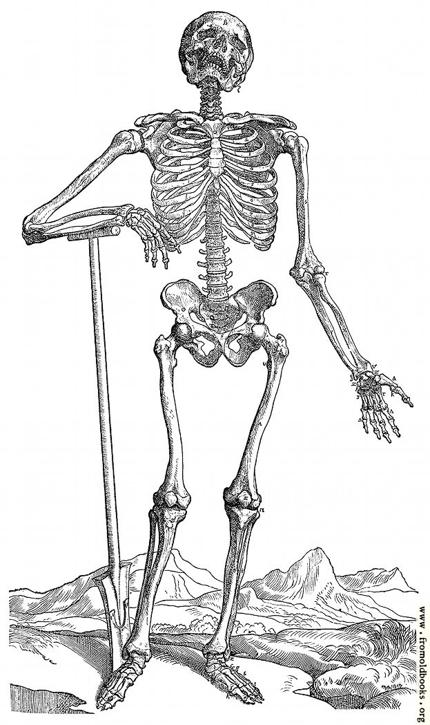 [Picture: 163. Skeleton with Shovel]