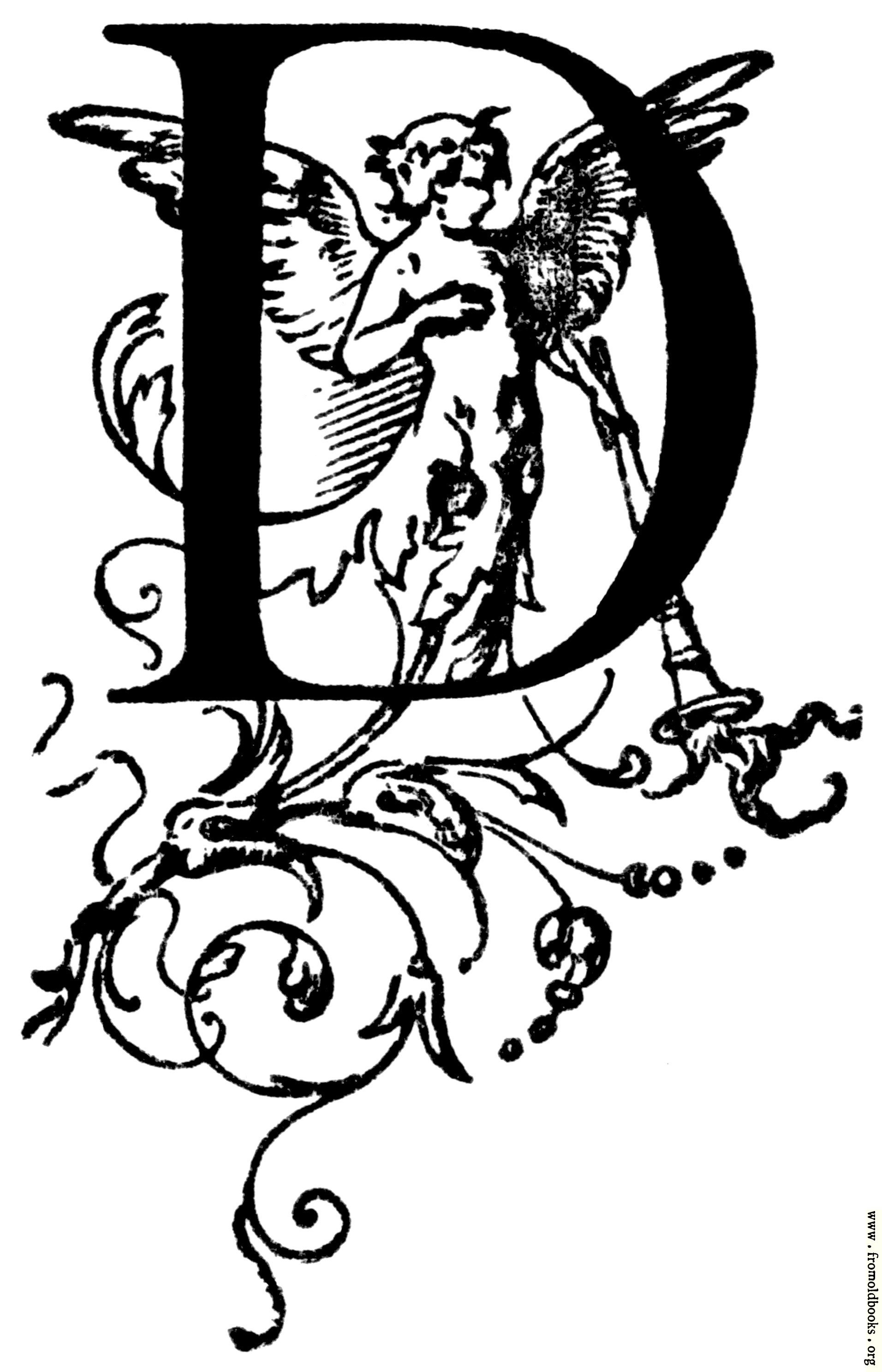 162 initial letter d q85 321x500g 1912x2976 393k jpg free download altavistaventures Image collections