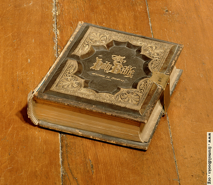 [Picture: Holman's Holy Bible, 1875 edition]