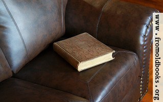 [picture: Victorian book on leather couch]